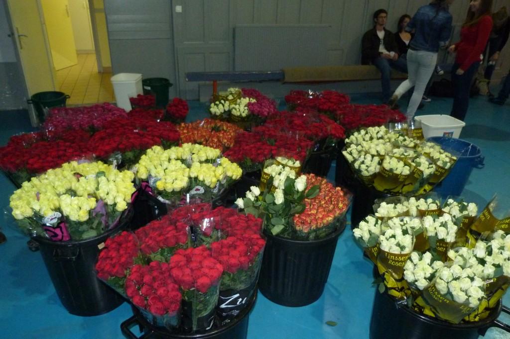 Stock de Roses